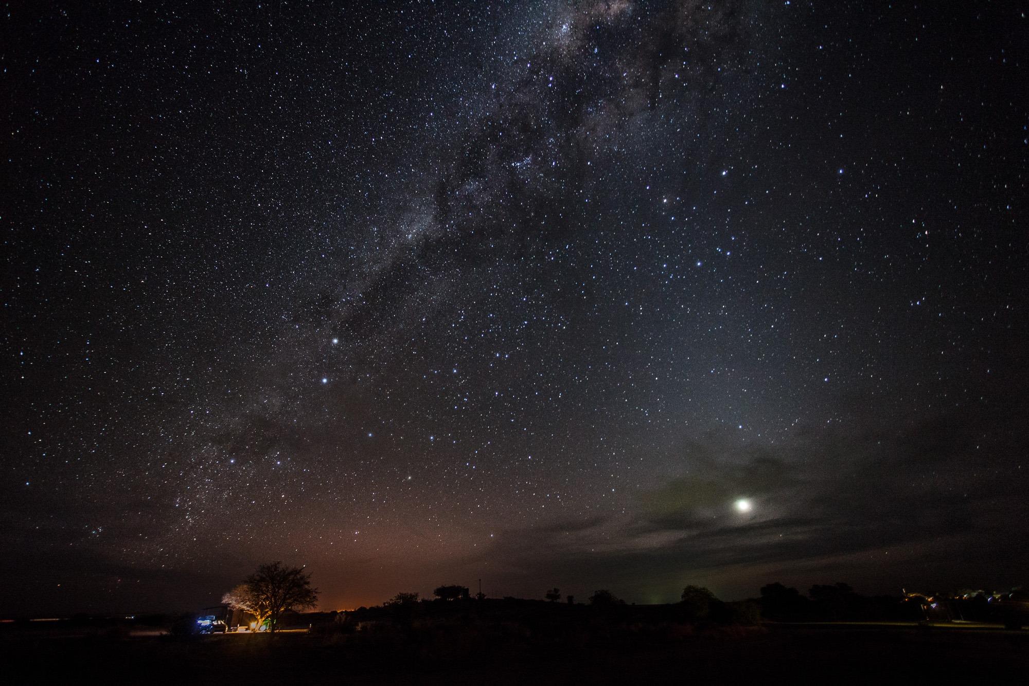 Sternenhimmel mit Milchstrasse im Köcherbaumwald in Namibia