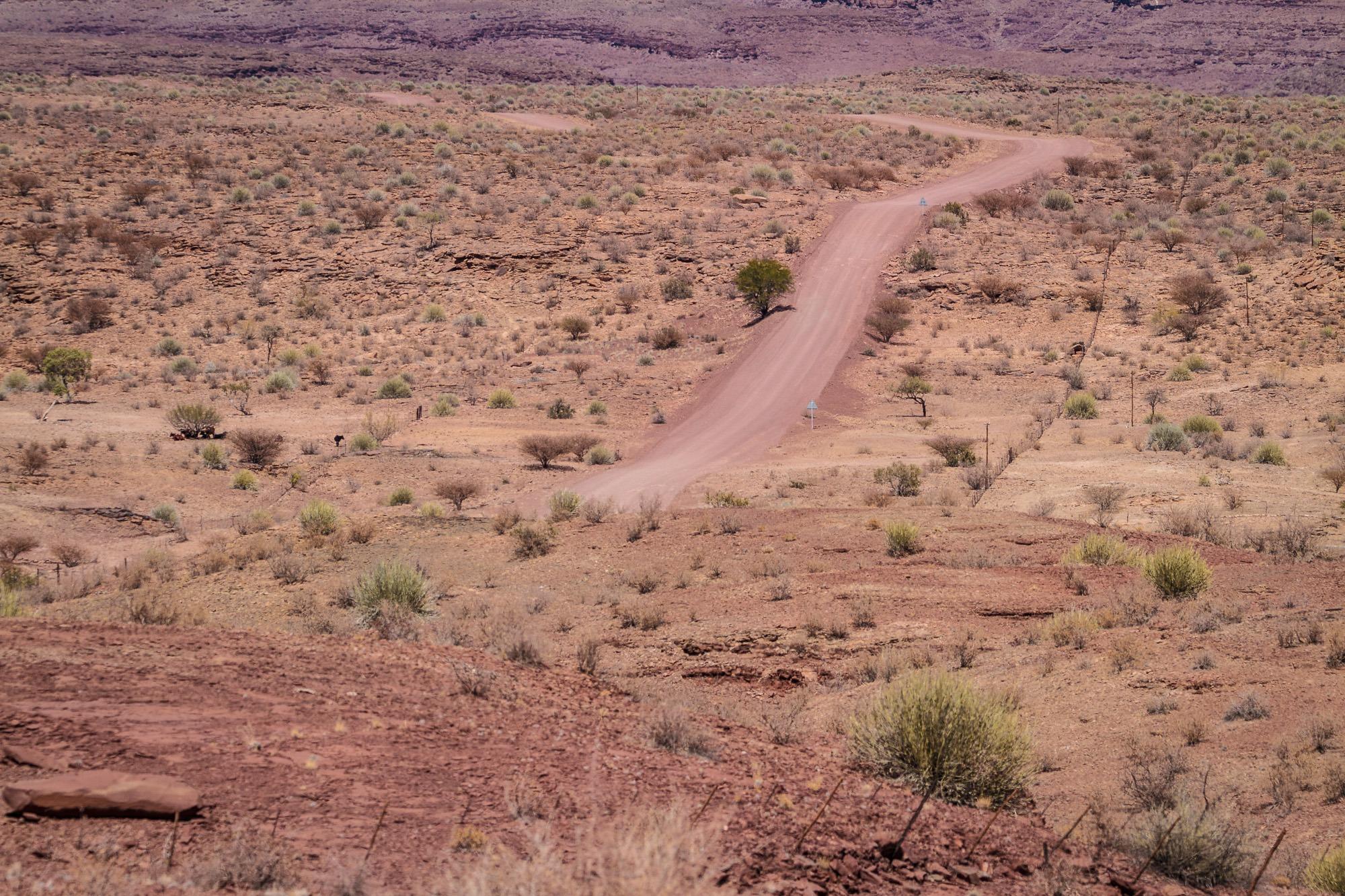 Hügelige kurvige Strasse in der Wüste von Namibia