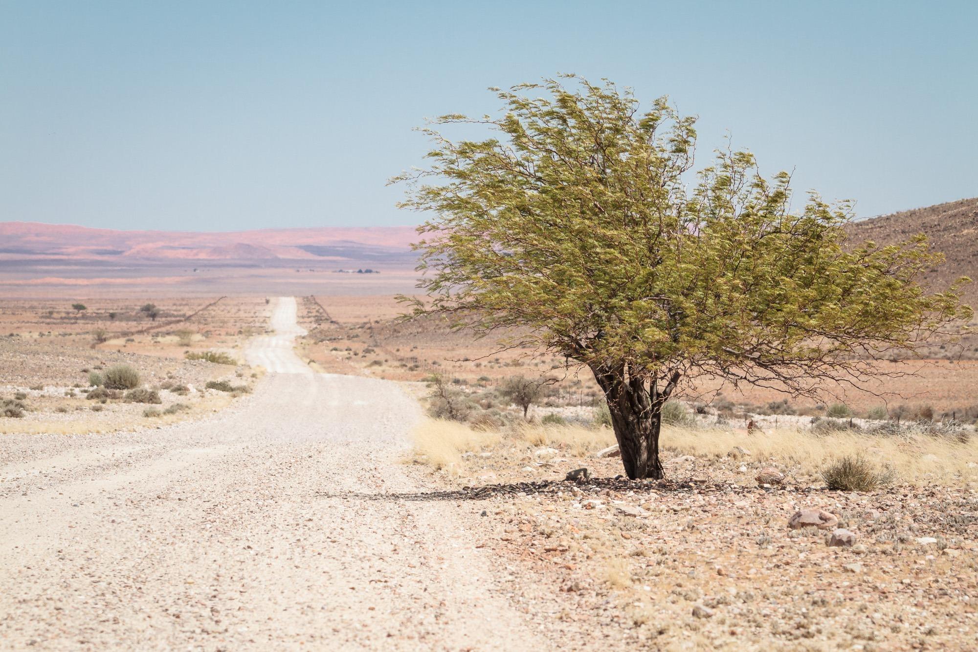 D707 durch die Tirasberge in der Namib Wüste Namibia