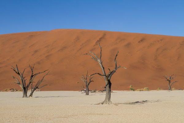Deadvlei Sossusvlei Namibia