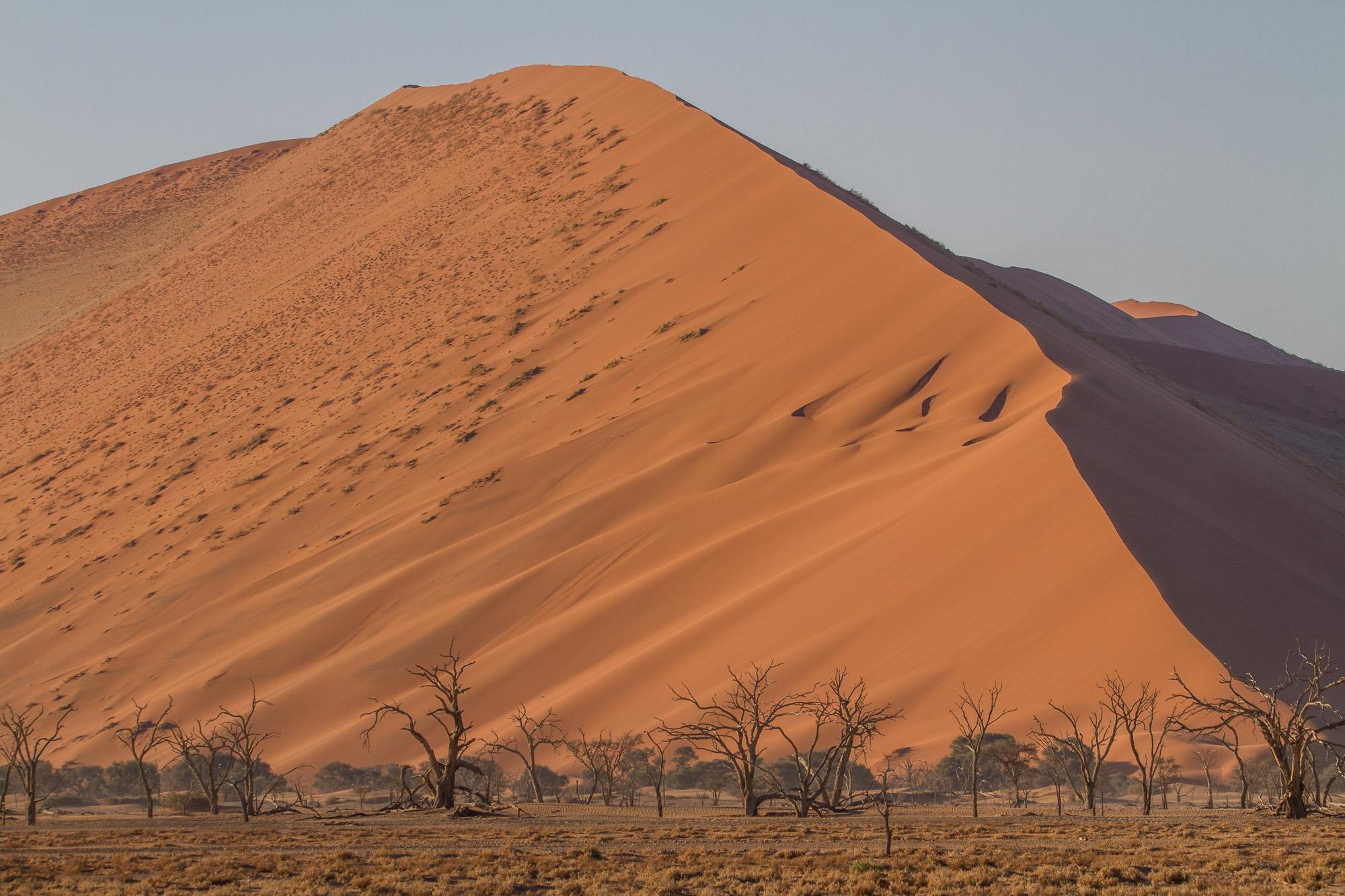 Deadvlei Sossusvlei Namibia Dune 45