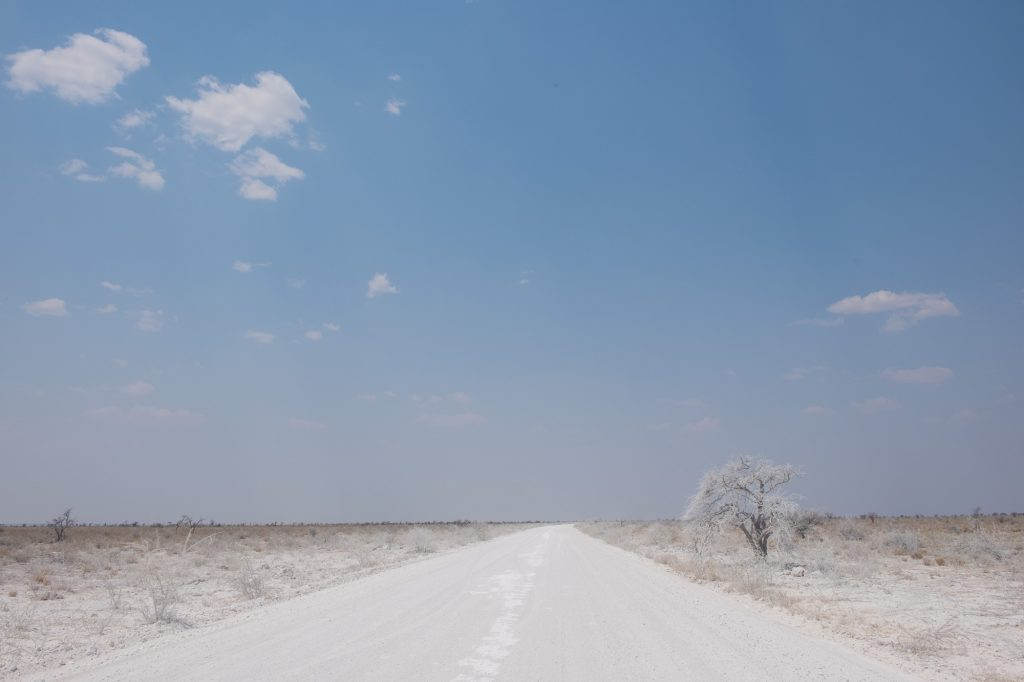 Weiß verstaubte Schotterpiste im Etosha Nationalpark in Namibia